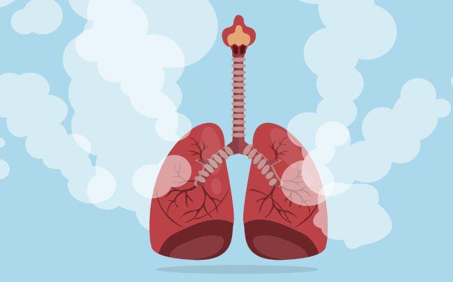 Aquests són els 3 riscos del canvi climàtic en la nostra salut